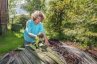 Bievennlige planter, Sigrid Ann Mortensen er leder for Nordstrand hagelag.