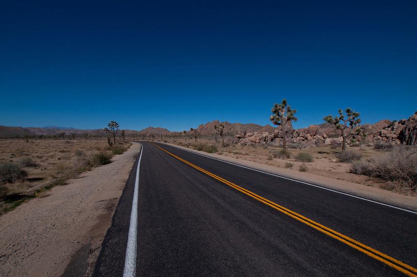 Park Boulevard, Joshua Tree National Park, California