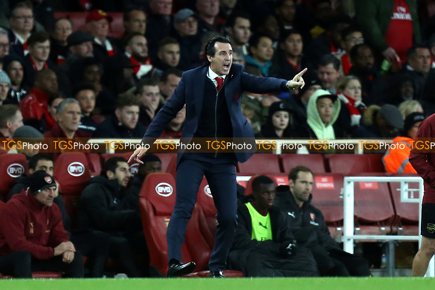 Arsenal manager Unai Emery during Arsenal vs Wolverhampton Wanderers, Premier League Football at the Emirates Stadium on 11th November 2018