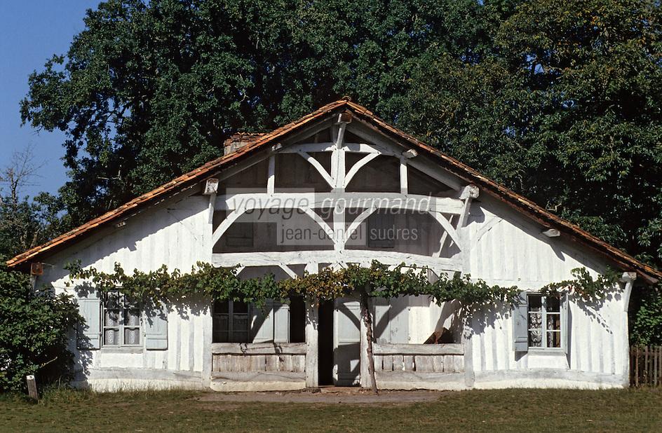 Europe/France/Aquitaine/40/Landes/Parc Naturel Régional des Landes de Gascogne/Marquèze (écomusée de la Grande Lande): La maison de maître