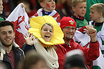 Welsh fans enjoying the pre-match build up.<br /> Dove Men Series 2014<br /> Wales v Fiji<br /> Millennium Stadium<br /> 15.11.14<br /> ©Steve Pope-SPORTINGWALES