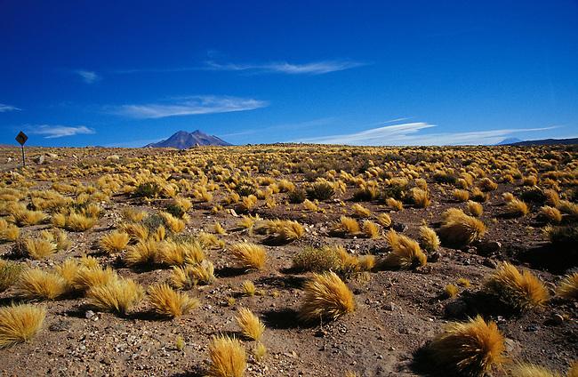 Route entre San Pedro de Atacama et Paso Jama. Paysage pres de Licancabur. *** Landscape near Licancaur between San Pedro de Atacama and Paso Jama, Chile.