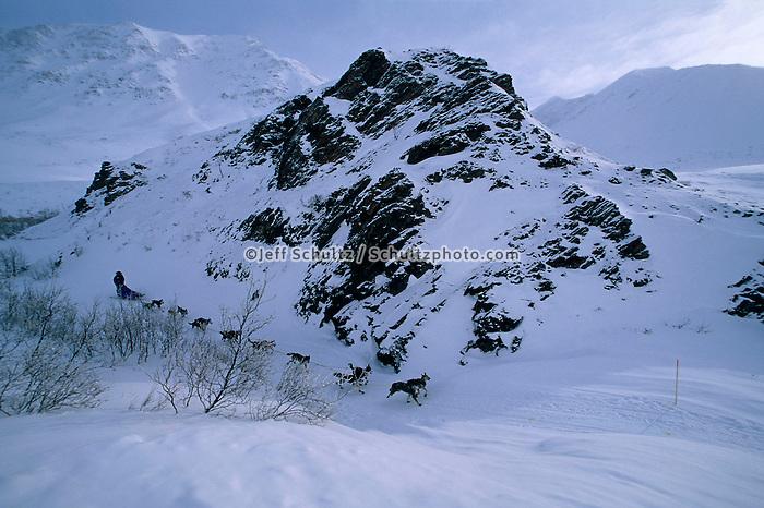 Kjetil Backen In Rainy Pass Alaska.2004 Iditarod