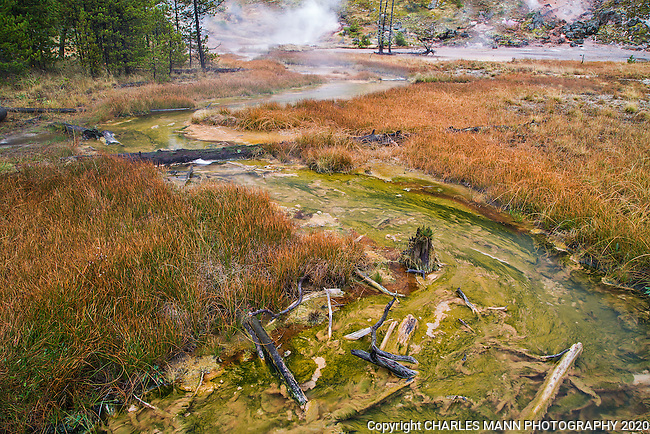 The area known as the Artist's Paint Pots is a trail that leads to a colorful set of geysers and hot springs in the center of Yellowstone National Park.