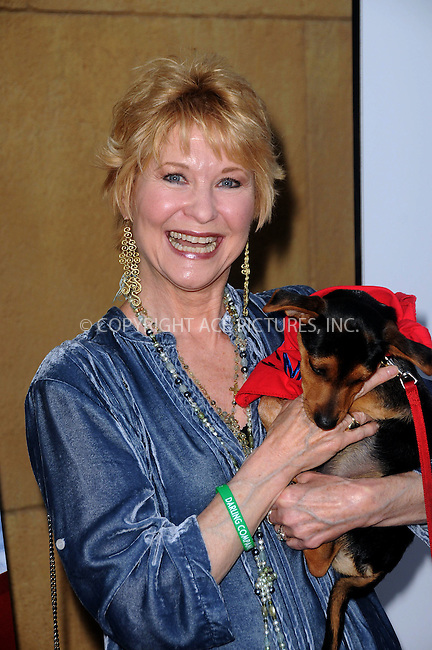 WWW.ACEPIXS.COM . . . . .  ....April 17 2012, LA....Dee Wallace arriving at the premiere of 'Darling Companion' at American Cinematheque's Egyptian Theatre on April 17, 2012 in Hollywood, California.....Please byline: PETER WEST - ACE PICTURES.... *** ***..Ace Pictures, Inc:  ..Philip Vaughan (212) 243-8787 or (646) 769 0430..e-mail: info@acepixs.com..web: http://www.acepixs.com