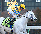 Gotham, Top Flight, Tom Fool at Aqueduct - 3-3-12