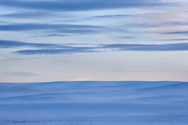 snowy winter wheatfield and sky at twilight, Eastern Washington