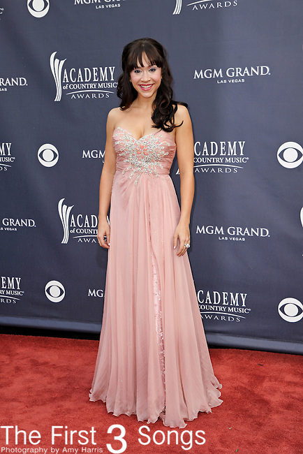 Diana DeGarmo attends the 46th Annual Academy of Country Music Awards in Las Vegas, Nevada on April 3, 2011.