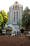 William S. Hart Dog Park on the Sunset Strip with the Sunset Tower in the background, Los Angeles, CA