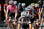 The peloton including race leader Maglia Rosa Tom Dumoulin (NED) Team Sunweb in action during Stage 15 of the 100th edition of the Giro d'Italia 2017, running 199km from Valdengo to Bergamo, Italy. 21st May 2017.<br /> Picture: LaPresse/Fabio Ferrari | Cyclefile<br /> <br /> <br /> All photos usage must carry mandatory copyright credit (&copy; Cyclefile | LaPresse/Fabio Ferrari)