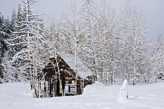 A photo of an old pioneer cabin covered in snow. This cabin is located in a meadow between Truckee, CA and Lake Tahoe on Brockway Summit at 7,000 feet.