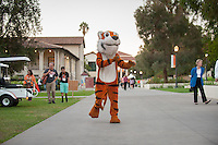 Oswald meets with fans. Occidental College students, their families and alumni enjoy the Tiger Tailgate & Oswald's Carnival in the Academic Quad during Homecoming, Oct. 25, 2014. (Photo by Marc Campos, Occidental College Photographer)