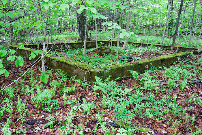 Old foundation in Kinsman Notch of the White Mountains, New Hampshire USA during the spring months.