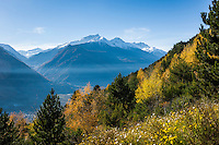 Italy, Alto Adige - Trentino (South Tyrol), valley Val Venosta, Castelbello-Ciardes: at Monte Sole above Castelbello-Ciardes | Italien, Suedtirol, (Alto Adige - Trentino) der  Vinschgau, Kastelbell-Tschars: auf dem Sonnenberg oberhalb von Kastelbell-Tschars
