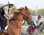 Monmouth Park Morning Workouts 2014
