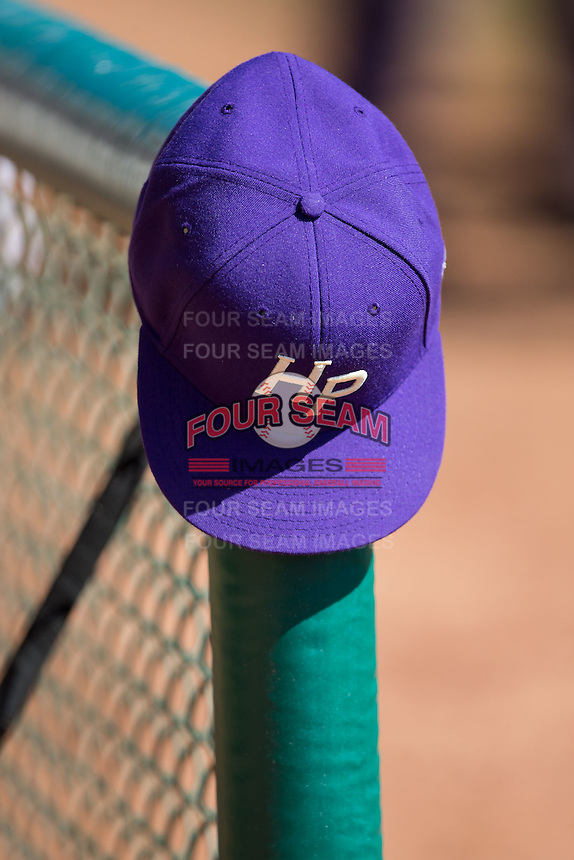 The High Point Panthers played host to the LIU-Brooklyn Blackbirds at Willard Stadium on March 8, 2015 in High Point, North Carolina.  The Panthers defeated the Blackbirds 9-0.  (Brian Westerholt/Four Seam Images)