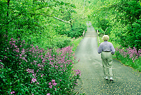 Senior woman walking on country road lined with spring blooms