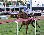 January 25, 2020: Mean Mary #4  with jockey Luis Saez on board wins the La Prevoyante G3 Stakes during the Pegasus World Cup Invitational at Gulfstream Park Race Track in Hallandale Beach, Florida. Liz Lamont/Eclipse Sportswire/CSM