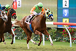 DEL MAR,CA-SEPTEMBER 02: King of Speed #8,ridden by Gary Stevens, wins the Del Mar Juvenile Turf at Del Mar Race Track on September 2,2018 in Del Mar,California (Photo by Kaz Ishida/Eclipse Sportswire/Getty Images)