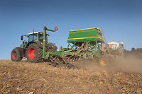 18.9.2020 Drilling Winter Linseed in Lincolnshire <br /> ©Tim Scrivener Photographer 07850 303986<br />      ....Covering Agriculture In The UK.