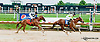 Briar Mojo winning at Delaware Park on 8/1/13