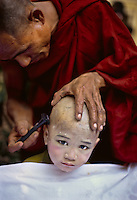 Monk getting head shaved, rangoon, Burma, 2005