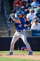 Toronto Blue Jays right fielder Andrew Guillotte (83) at bat during a Grapefruit League Spring Training game against the New York Yankees on February 25, 2019 at George M. Steinbrenner Field in Tampa, Florida.  Yankees defeated the Blue Jays 3-0.  (Mike Janes/Four Seam Images)