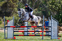 Class 31 Pony 1.05m. 2020 NZL-Fieldline Horse Floats Brookby Showjumping Summer GP Show. Papatoetoe Pony Club. Auckland. Sunday 9 February. Copyright Photo: Libby Law Photography