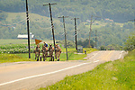 Route 654 Lycoming County. 4 horse Amish team.