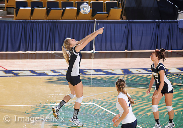 Florida International University women's volleyball setter Anabela Sataric (8) plays against Jacksonville University which won the match 3-2 on September 12, 2013 at Miami, Florida.