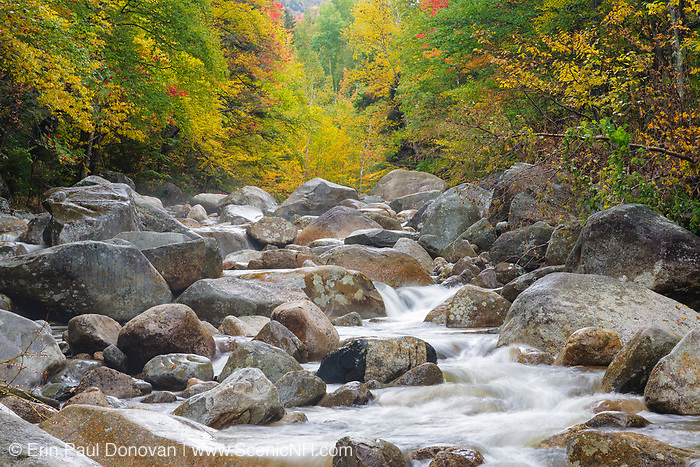 Zealand River in Bethlehem, New Hampshire during the autumn months. This area was once part of the Zealand Valley Railroad, which was a logging railroad in operation from 1884-1897.