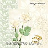 Isabella, WEDDING, paintings(ITKE092128SLWK,#W#)