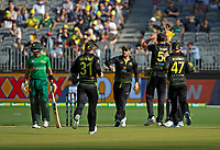 8th November 2019; Optus Stadium, Perth, Western Australia Australia; T20 Cricket, Australia versus Pakistan; Babar Azam of Pakistan is given out L.B.W. as the Australian players celebrate his wicket - Editorial Use