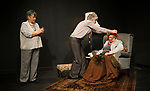 SilverSage and Spare Tyre.<br /> THE PROMISE<br /> New Diorama Theatre.