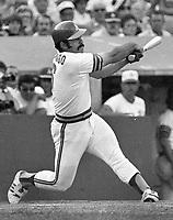 Oakland Athletics Sal Bando..(1973 photo/Ron Riesterer)