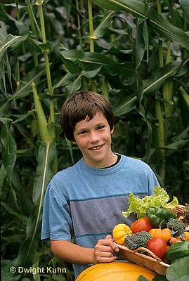 HS18-087z  Boy harvesting vegetables -  tomato, cucumber, carrot, squash, broccoli, lettuce, pumpkin