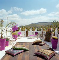 The whitewashed roof terrace is furnished with a leather rug from Mauritania strewn with cushions and a pair of bright pink sun loungers which complement the colour of the plant pots