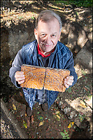 BNPS.co.uk (01202 558833)<br /> Pic: PhilYeomans/BNPS<br /> <br /> Archaeologist Robin Holley with Tudor tiles in the rediscovered foundations of Wolf Hall. <br /> <br /> Historic Wolf Hall, home to the Seymour family and star of Hilary Mantel's famous trilogy on Henry VIII th, has finally been definitively located after new discoveries around the much smaller ramshackle house that remains today. <br /> <br /> Despite it's fame, nobody really knew where the enormous Tudor pile actually was, or what it looked like, due to its very short but very influential existance in the middle of the tumultuous 16th century.<br /> <br /> Built with a million pound loan (&pound;2,400) from King Henry in 1531, brokered by Thomas Cromwell, the huge house was rapidly brick built in time for the King's pivotal visit with the court and troublesome wife Anne Boleyn in 1535, at which point Sir John Seymour's daughter Jane caught his eye, within a year Anne was dead and Jane, and the rest of the Seymour clan were in.<br /> <br /> They benefitted massively from Royal patronage and the dissolution of the monastries, but it all went wrong when Henry died and the brothers fell out and were later executed in a spectacular fall from power only 21 years after the house was built.<br /> <br /> Historian Graham Bathe and his team have now uncovered part of the outline of the original building, as well as the extensive Tudor brick sewer system that proves the huge scale of the 16th century mansion.