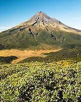 Taranaki , Mt. Egmont 2518m, living volcano and alpine vegetation, Egmont National Park, North Island, New Zealand, NZ