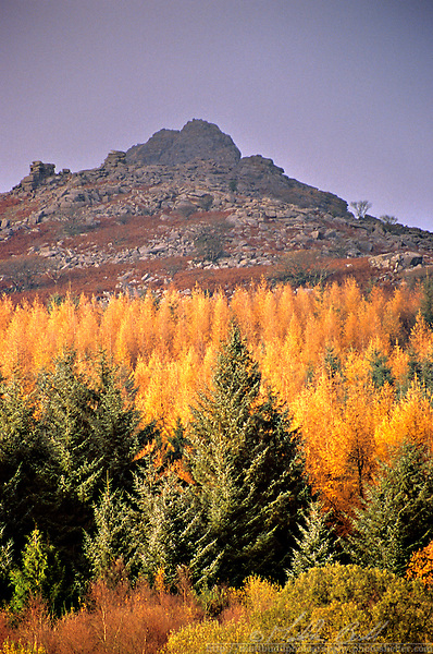 Peek Hill, Dartmoor