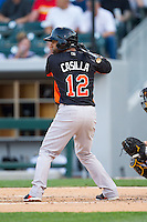 Alexi Casilla (12) of the Norfolk Tides at bat against the Charlotte Knights at BB&T Ballpark on May 21, 2014 in Charlotte, North Carolina.  The Tides defeated the Knights 10-3.  (Brian Westerholt/Four Seam Images)
