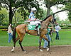 Stormy Waters with Joe Sharp before The Gentleman International Fegentri Race at Delaware Park on 9/3/11