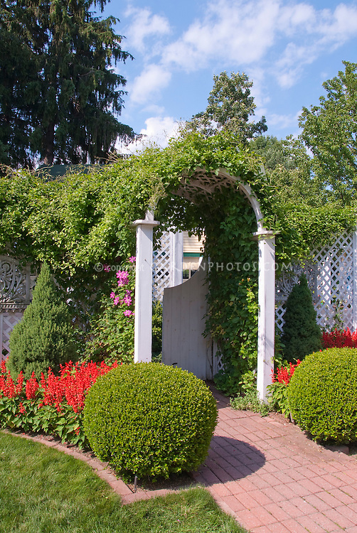 Garden Arbor Entrance with clipped boxwood
