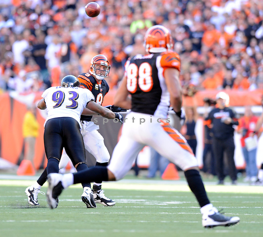 CARSON PALMER, of the Cincinnati Bengals, in action during the Bengals game against the Baltimore Ravens on November 8, 2009 in Cincinnati, OH. Bengals won 17-7.