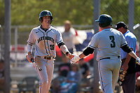 Dartmouth Big Green Michael Calamari (3) greets Trevor Johnson (36) after a run during a game against the Omaha Mavericks on February 23, 2020 at North Charlotte Regional Park in Port Charlotte, Florida.  Dartmouth defeated Omaha 8-1.  (Mike Janes/Four Seam Images)