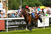 Winner of The Bathwick Tyres Novice Auction Stakes(plus 10, Div 1),Initiative ridden by Dane O'Neil and trained by Henry Spiller  during Afternoon Racing at Salisbury Racecourse on 13th June 2017