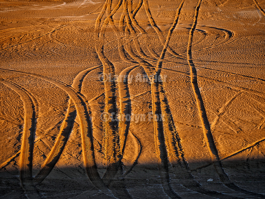 Tire tracks at sunrise at the Winnemucca Dunes along US-95 north of town in the late winter.