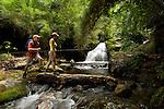 Trekking, Parque Internacional La Amistad, Tierras Altas, Provincia de Chiriqui / Trekking, La Amistad National Park, Highlands, Chiriqui Province