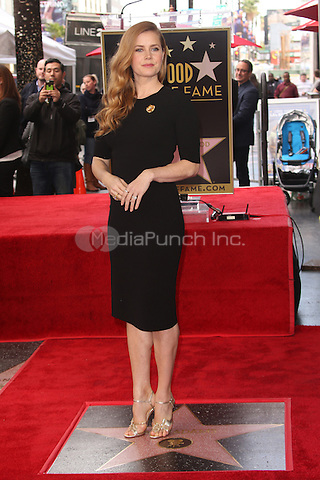 HOLLYWOOD, CA - JANUARY 11: Actress Amy Adams honored on the Hollywood Walk of Fame on January 11, 2017 in Hollywood, California. Credit: Faye Sadou/MediaPunch