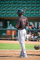 Hector Vargas (27) of the Billings Mustangs at bat against the Ogden Raptors in Pioneer League action at Lindquist Field on August 16, 2015 in Ogden, Utah. Billings defeated Ogden 6-3.  (Stephen Smith/Four Seam Images)